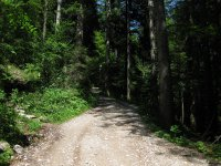 Scharnitz-Almen: Bild #14