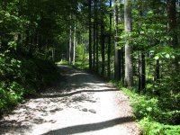 Scharnitz-Almen: Bild #15