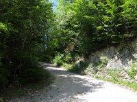 Scharnitz-Almen: Bild #26