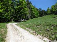 Scharnitz-Almen: Bild #46