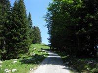 Scharnitz-Almen: Bild #48