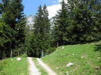 Scharnitz-Almen: Bild #57