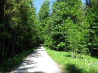 Schwarzenbachtal-Rautalm: Bild #15
