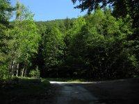 Schwarzenbachtal-Rautalm: Bild #18