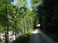 Schwarzenbachtal-Rautalm: Bild #20