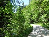 Schwarzenbachtal-Rautalm: Bild #23