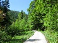 Schwarzenbachtal-Rautalm: Bild #24