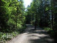 Schwarzenbachtal-Rautalm: Bild #27