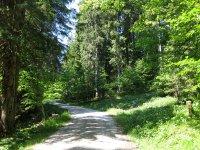 Schwarzenbachtal-Rautalm: Bild #30