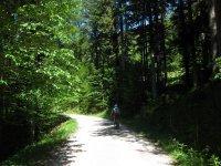 Schwarzenbachtal-Rautalm: Bild #31