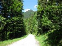 Schwarzenbachtal-Rautalm: Bild #32