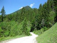 Schwarzenbachtal-Rautalm: Bild #34
