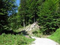 Schwarzenbachtal-Rautalm: Bild #35