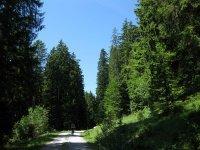 Schwarzenbachtal-Rautalm: Bild #36