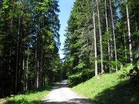 Schwarzenbachtal-Rautalm: Bild #37