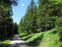 Schwarzenbachtal-Rautalm: Bild #38