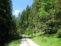 Schwarzenbachtal-Rautalm: Bild #39