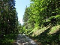 Schwarzenbachtal-Rautalm: Bild #41