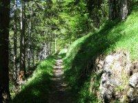 Schwarzenbachtal-Rautalm: Bild #46