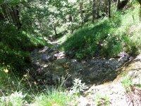 Schwarzenbachtal-Rautalm: Bild #50