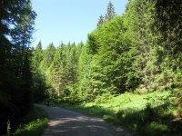 Delpssee: Bild #9