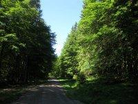 Delpssee: Bild #11