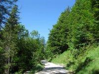 Delpssee: Bild #17
