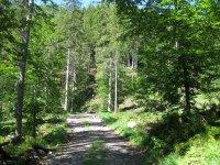 Delpssee: Bild #22