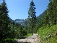 Delpssee: Bild #24