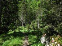 Delpssee: Bild #27