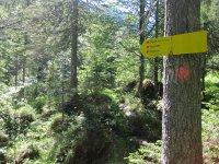 Delpssee: Bild #28