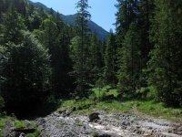 Delpssee: Bild #30