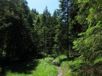 Delpssee: Bild #32