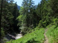Delpssee: Bild #33