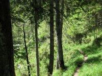 Delpssee: Bild #35