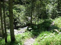 Delpssee: Bild #36