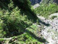 Delpssee: Bild #49