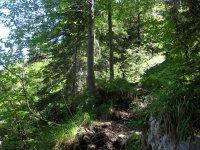 Delpssee: Bild #55