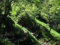 Delpssee: Bild #56