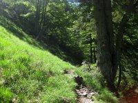 Delpssee: Bild #58