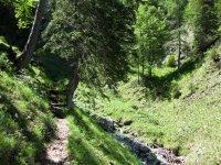 Delpssee: Bild #64