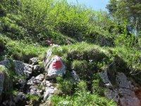 Delpssee: Bild #82