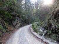 Lenggrieser Hütte: Bild #4