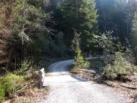 Lenggrieser Hütte: Bild #5