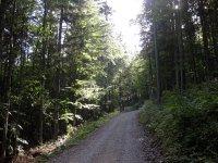 Lenggrieser Hütte: Bild #10
