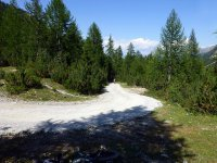Alp Mora Ofenpass Runde: Bild #4
