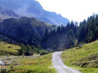 Alp Mora Ofenpass Runde: Bild #9