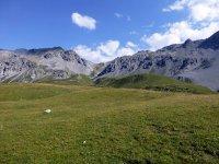 Alp Mora Ofenpass Runde: Bild #13