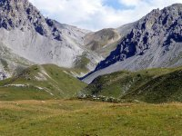 Alp Mora Ofenpass Runde: Bild #14