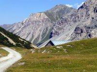 Alp Mora Ofenpass Runde: Bild #15